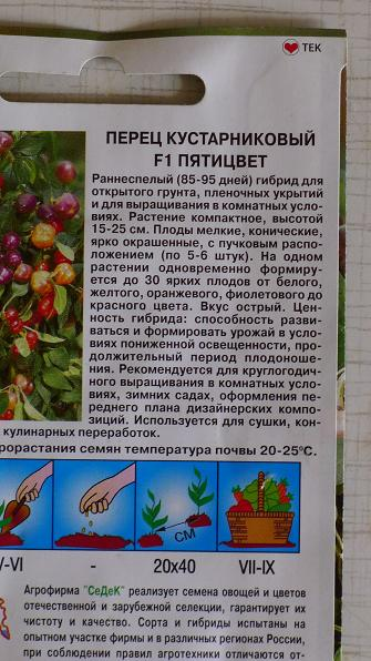 Перец пятицвет выращивание 15
